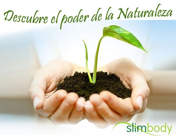 Descubre el poder de la naturaleza